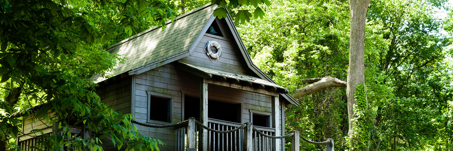 http://listassisters.com/wp-content/uploads/2018/12/Contact-Tree-House.jpg